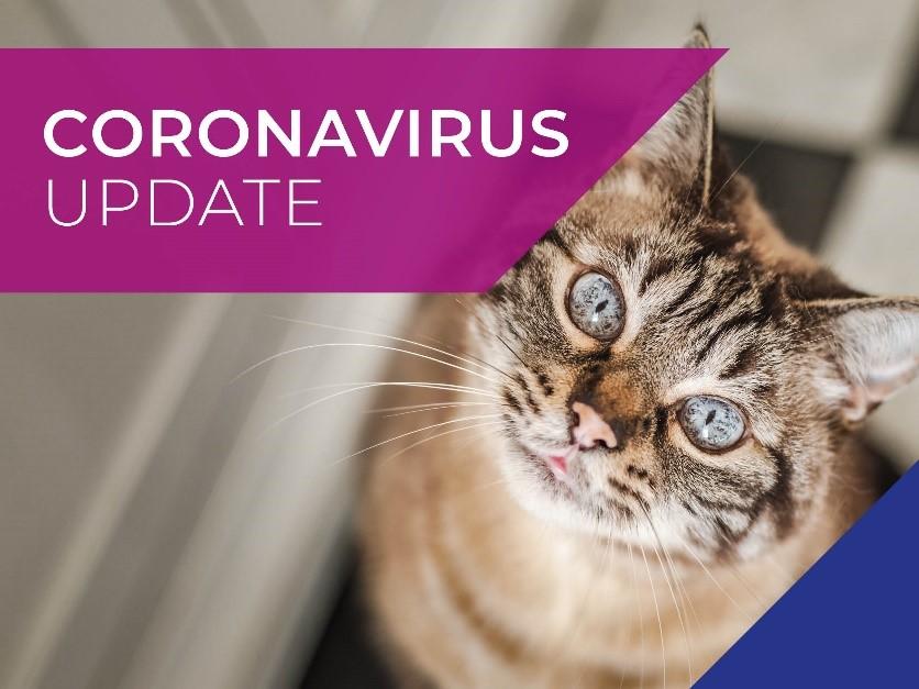 Peak Vets COVID-19 (Coronavirus) 29th June Update