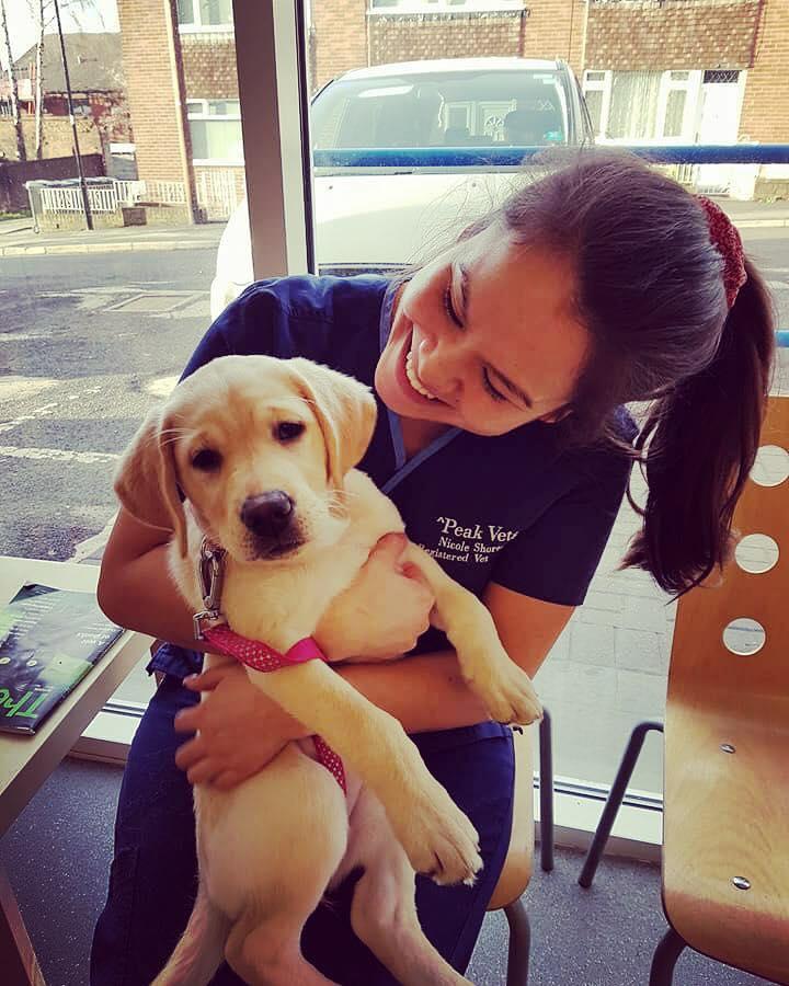Nicole Shorto – C-SQP – Registered Veterinary Nurse