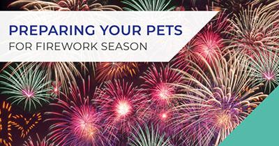Preparing your pet for firework season